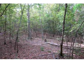 Property for sale at 56.9 Acs Big Wood Rd, Longview,  Texas 75605
