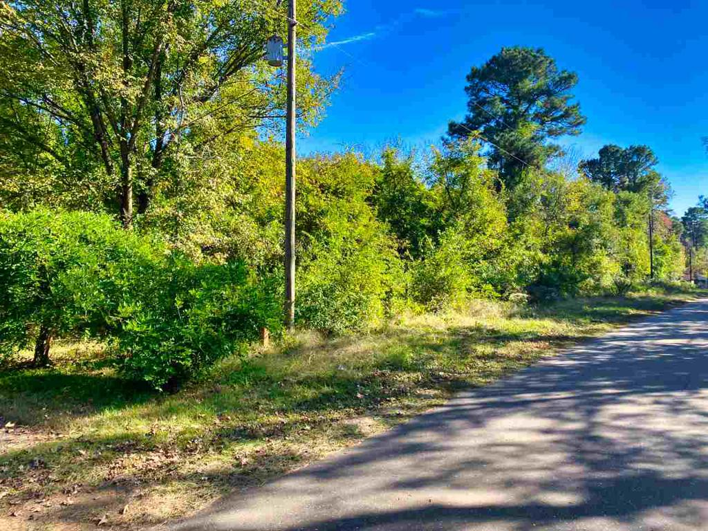Photo of home for sale at TBD Boondock Road, Avinger TX