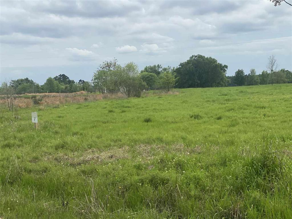Photo of home for sale at Lot 7&8 PR 2724, Mt. Pleasant TX