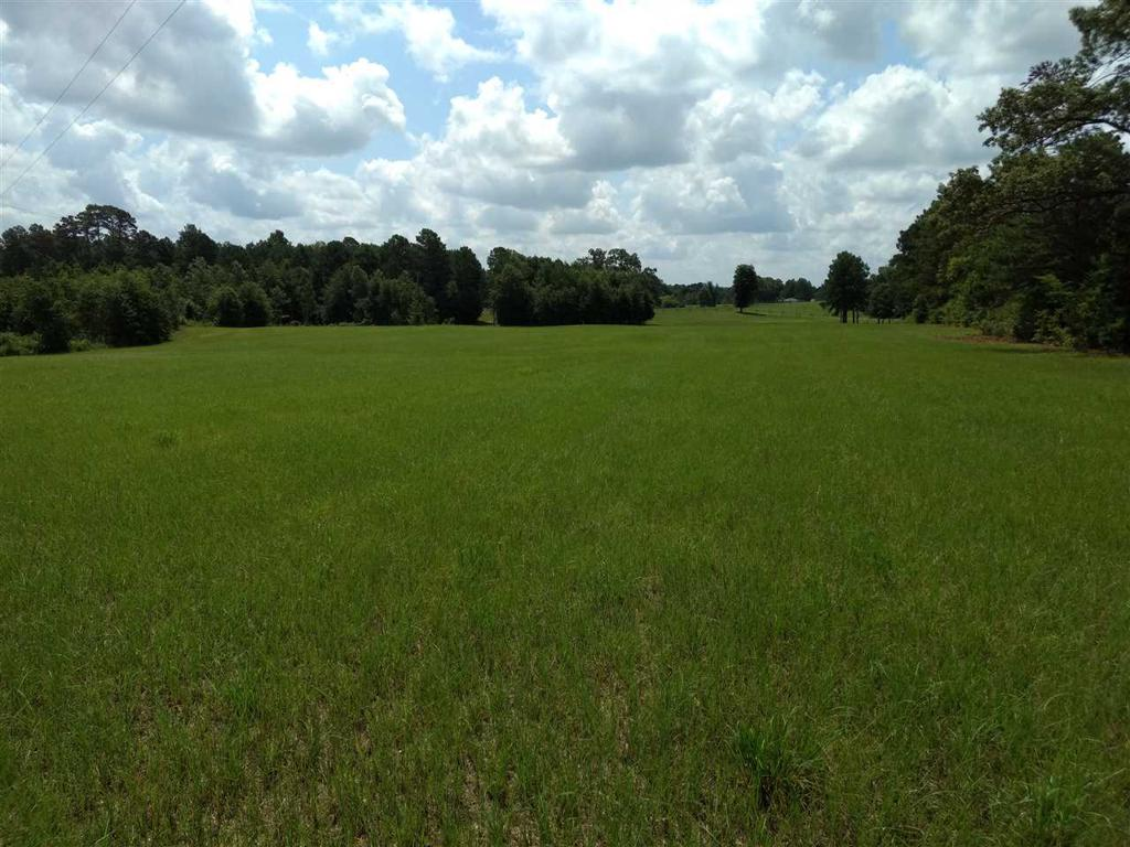 Photo of home for sale at TBD County Road 264, Beckville TX