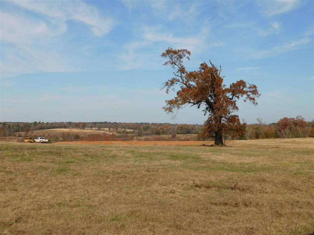 Photo of home for sale at TBD GEORGE RICHEY RD, Gladewater TX