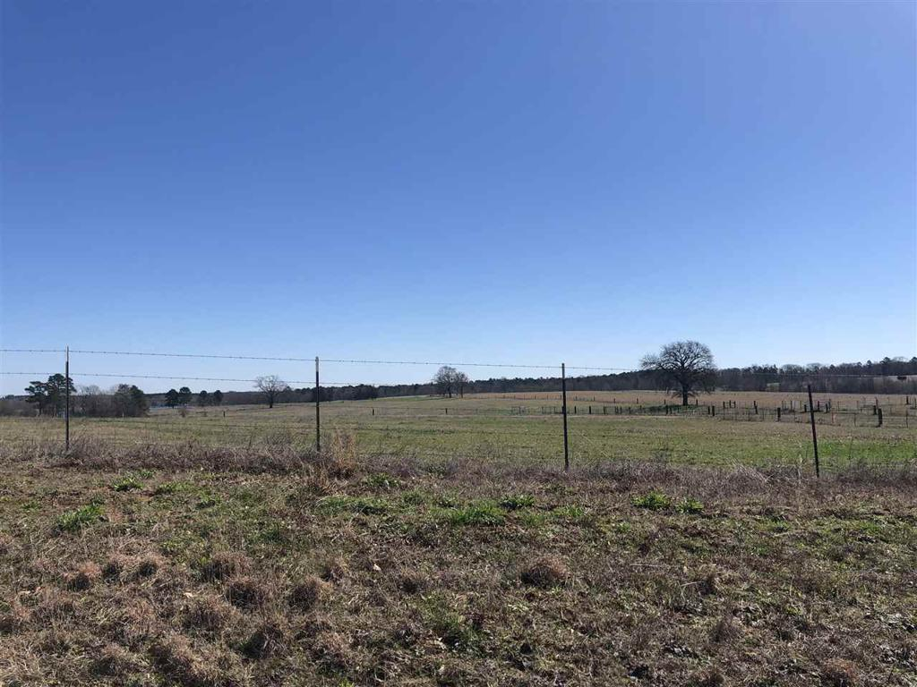 Photo of home for sale at TRACT 1 TBD FM 1400, Daingerfield TX