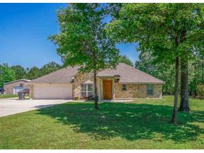 Property for sale at 431 PR 1104, Diana,  Texas 75640