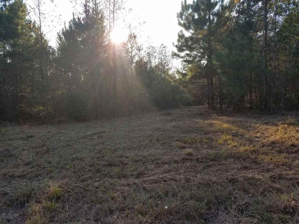 Photo of home for sale at TBD PR 2234 HWY 155, Ore City TX