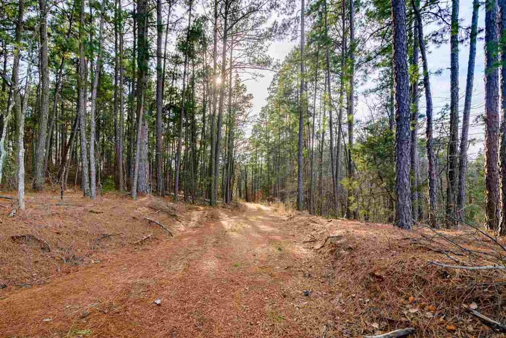 Photo of home for sale at 1050 FM 1845, East Mountain TX