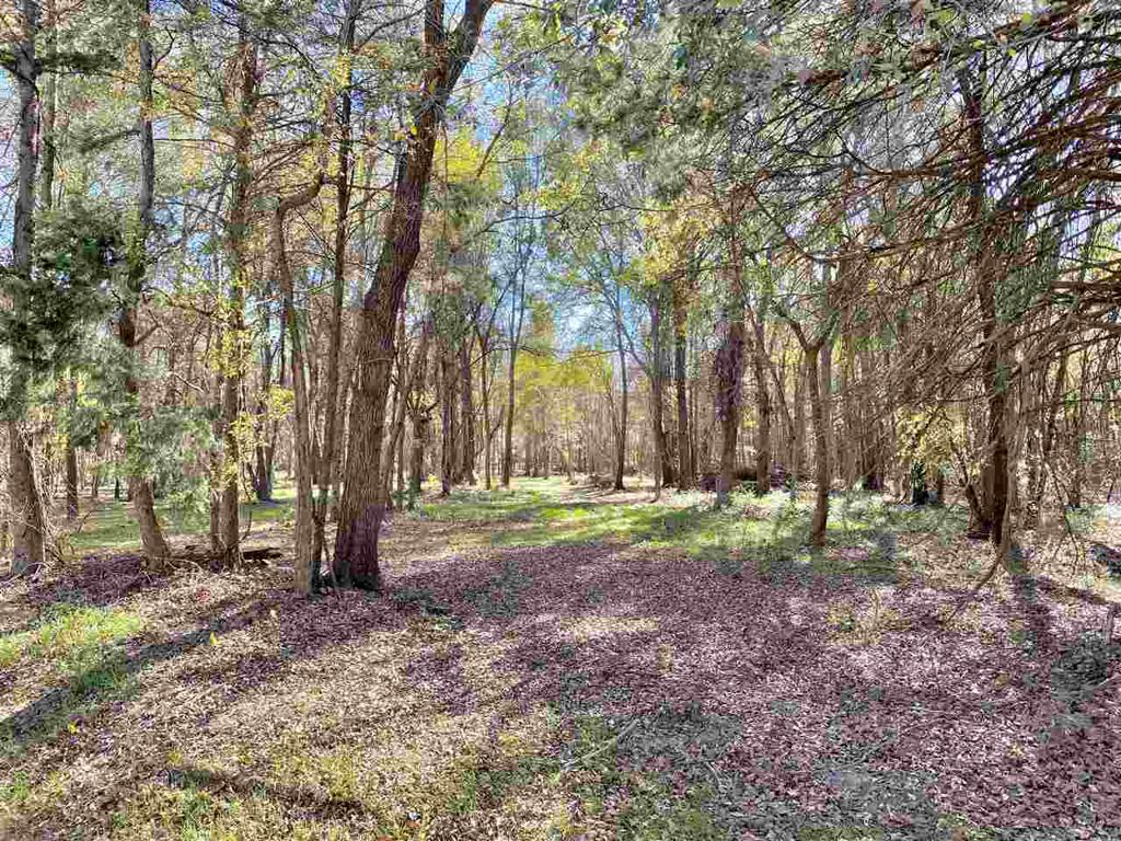 Photo of home for sale at TBD FM 852, Gilmer TX