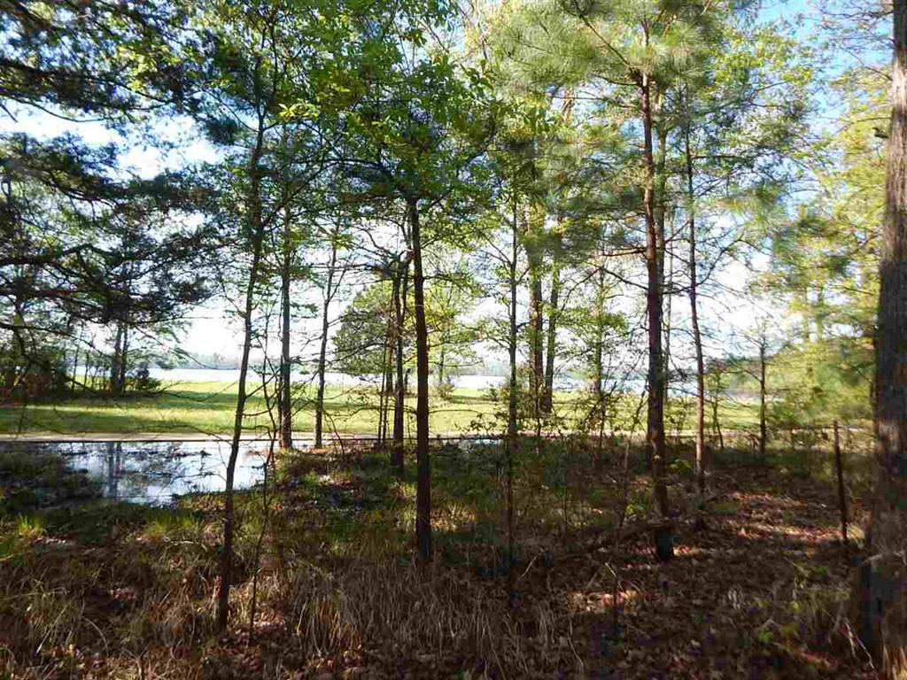 Photo of home for sale at TBD 2 ACRES CHEROKEE TRACE, Gilmer TX