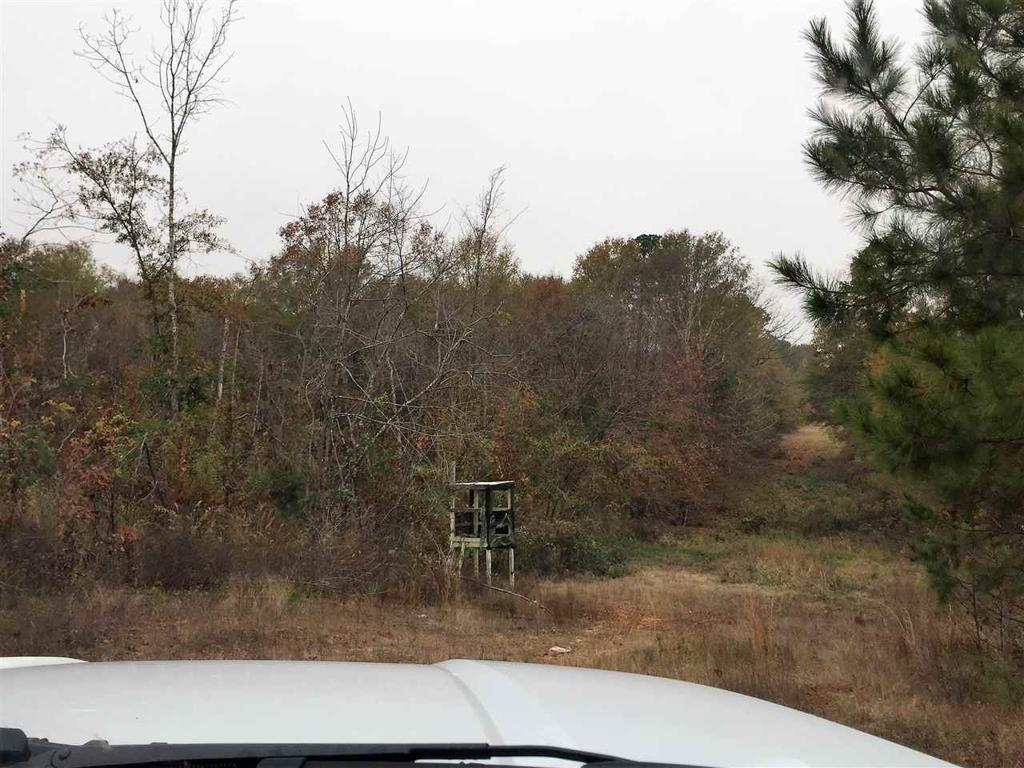 Photo of home for sale at TBD HWY 271 S, Gilmer TX