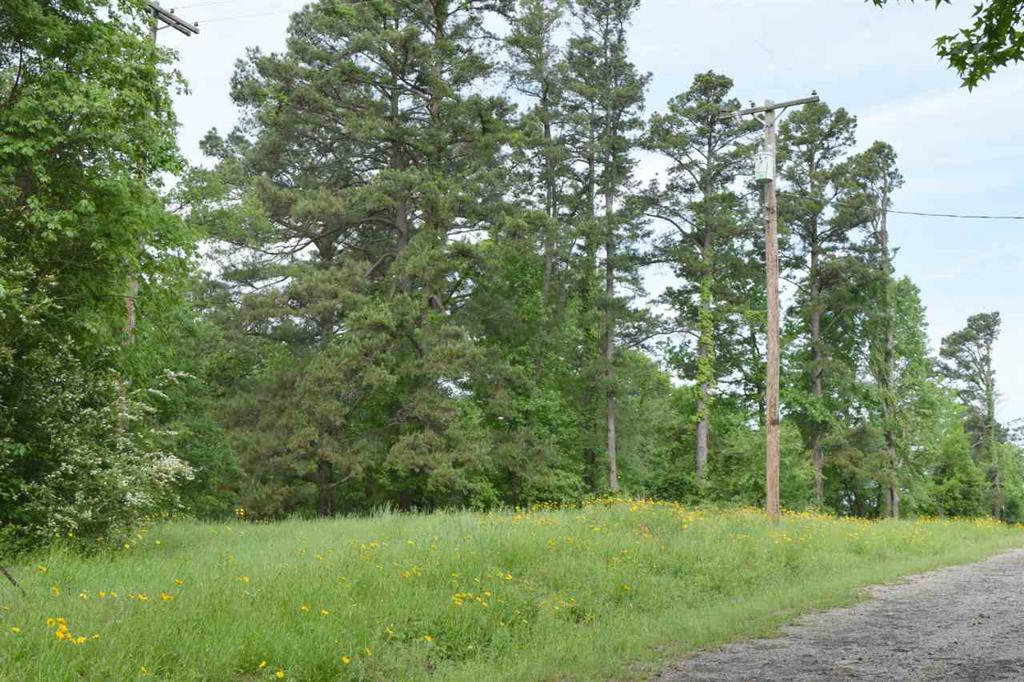 Photo of home for sale at TBD County Road 2942, Hughes Springs TX