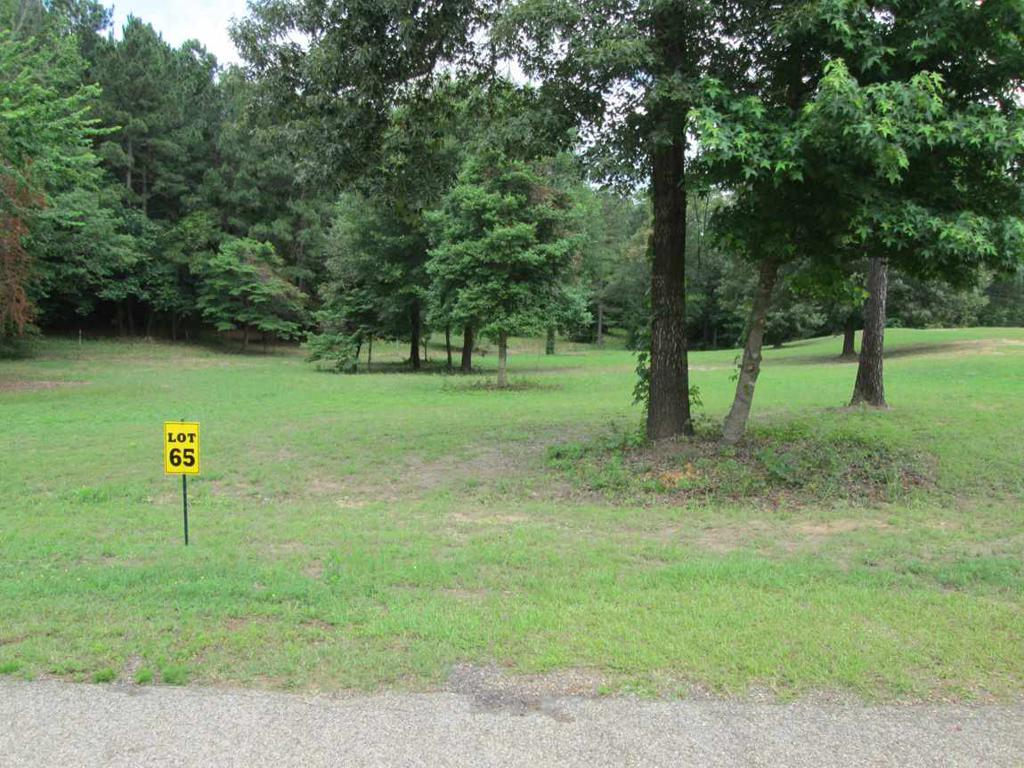Photo of home for sale at Lot 65 Widgeon Ln, Gilmer TX