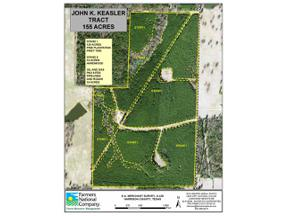 Property for sale at 195 Acres Dixie Ln, Hallsville,  Texas 75650
