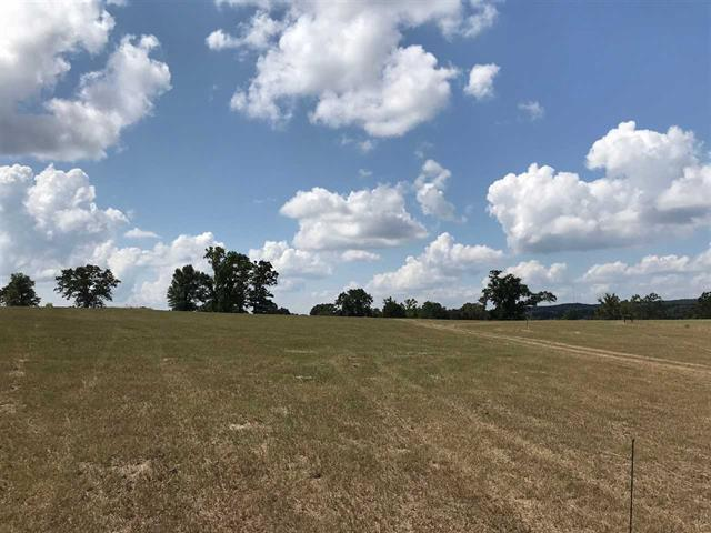 Photo of home for sale at TRACT 14 FM 3358, Gilmer TX