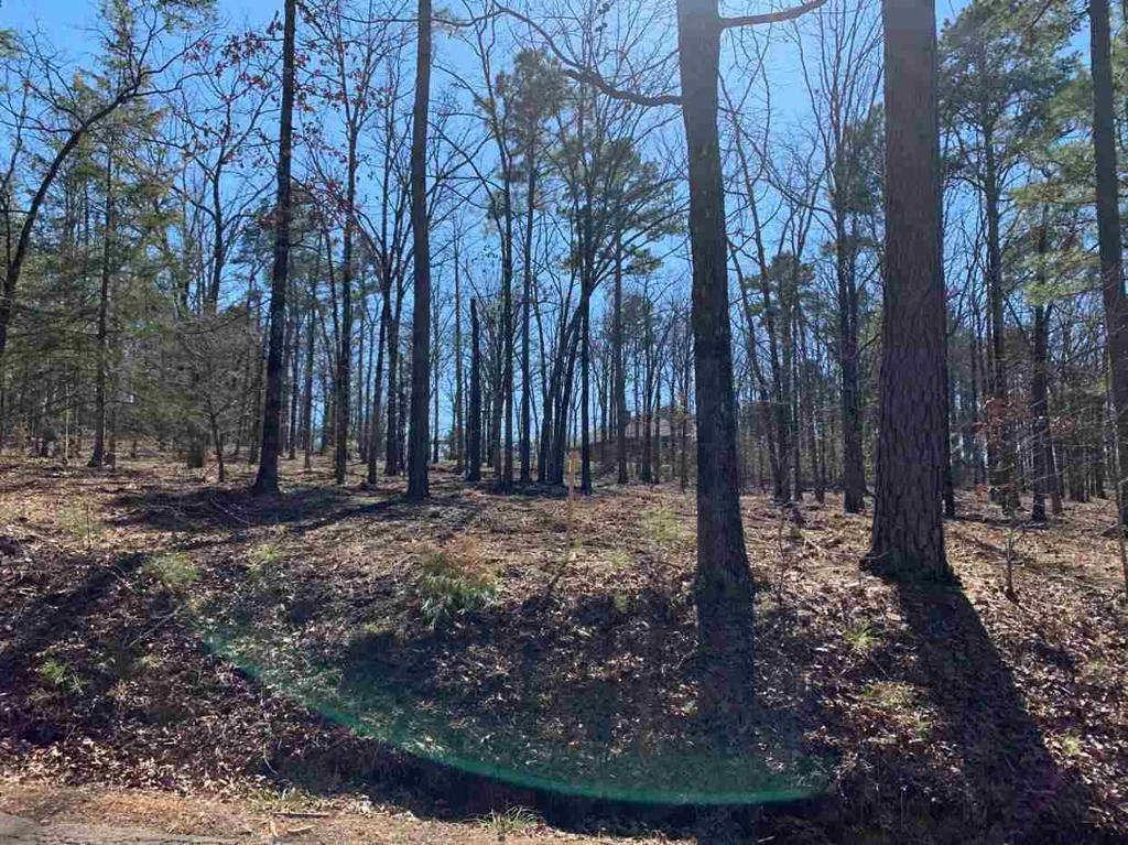 Photo of home for sale at TBD Bobwhite Rd. Tract 4 & 5, Gilmer TX