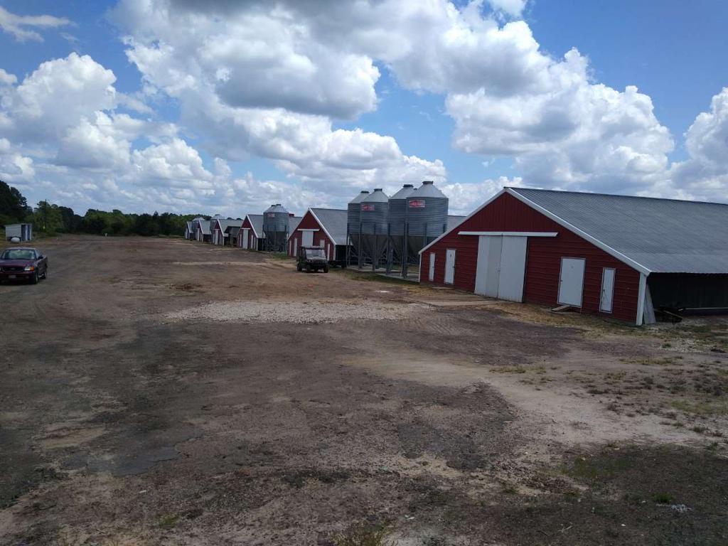 Photo of home for sale at 7820 FM 2088, Winnsboro TX