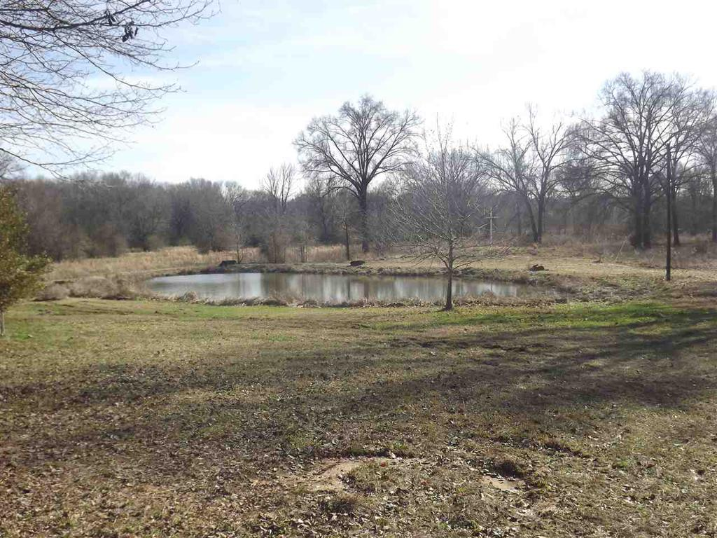Photo of home for sale at 18085 FM 449, Hallsville TX