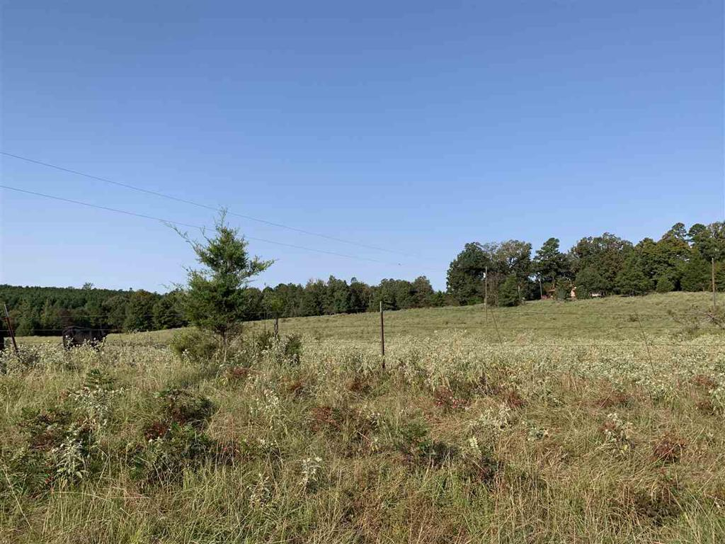 Photo of home for sale at TBD COUNTY ROAD 1775, Linden TX