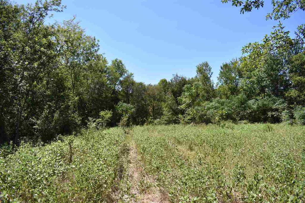 Photo of home for sale at TBD CR 1905 (204.616 acre tract), Talco TX