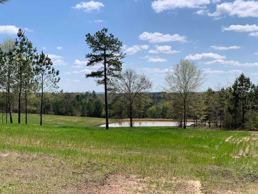 Photo of home for sale at SH 154E, Gilmer TX
