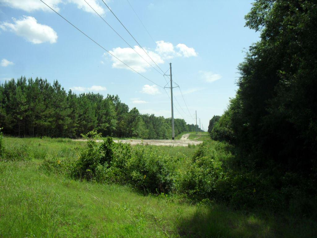 Photo of home for sale at TBD US HWY 271, Gilmer TX