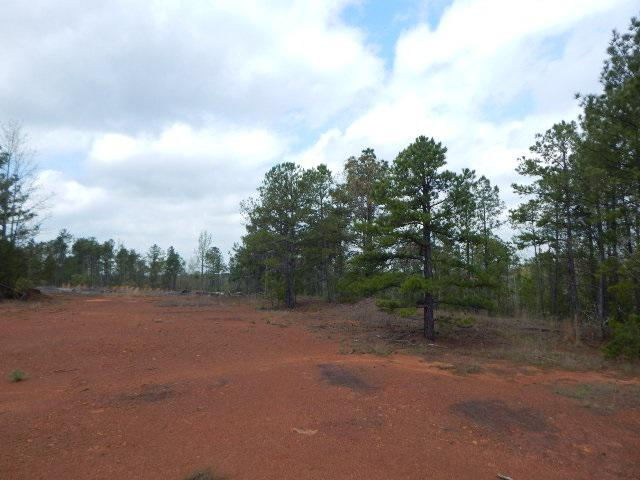 Photo of home for sale at TBD 28 ACRES PERIWINKLE, Ore City TX