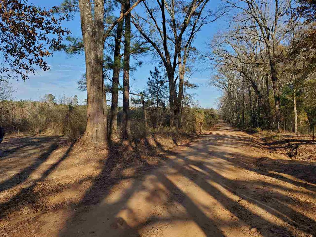 Photo of home for sale at TBD Rayburn Rd, Karnack TX