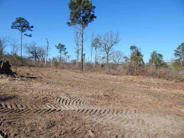 Photo of home for sale at TBD LOT 112 RAINTREE LAKES CIRCLE, Big Sandy TX