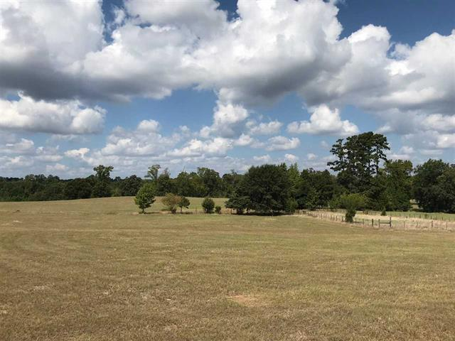Photo of home for sale at TRACT 10 FM 3358, Gilmer TX