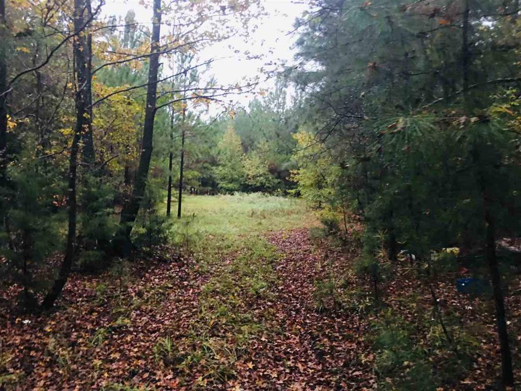 Photo of home for sale at TBD FM 1649, Ore City TX