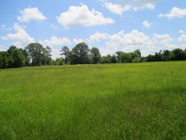 Photo of home for sale at County Road 164, Longbranch TX