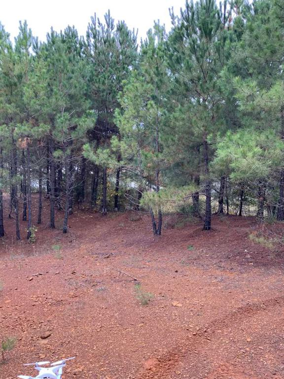 Photo of home for sale at TBD CR 2310, Lone Star TX