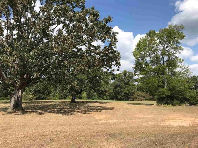 Photo of home for sale at TRACT 3 FM 3358, Gilmer TX