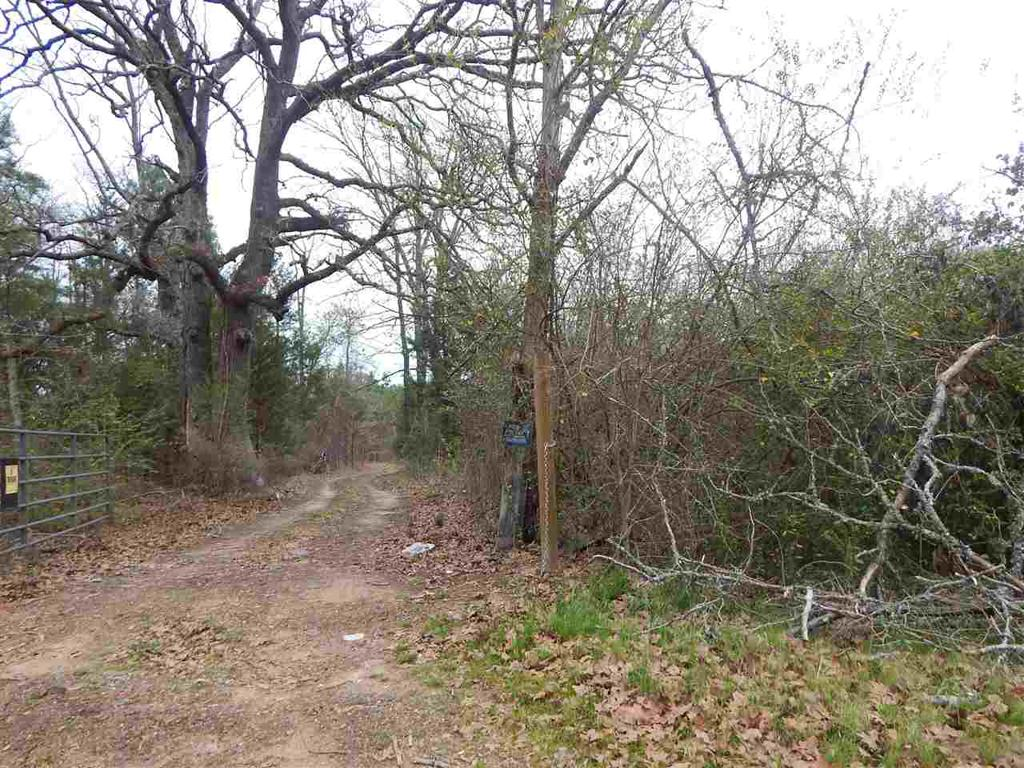 Photo of home for sale at TBD HWY 155, Lone Star TX