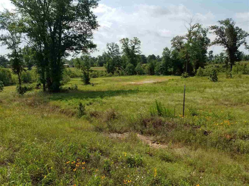 Photo of home for sale at TBD (lot 7) Palomino Pl, Gilmer TX