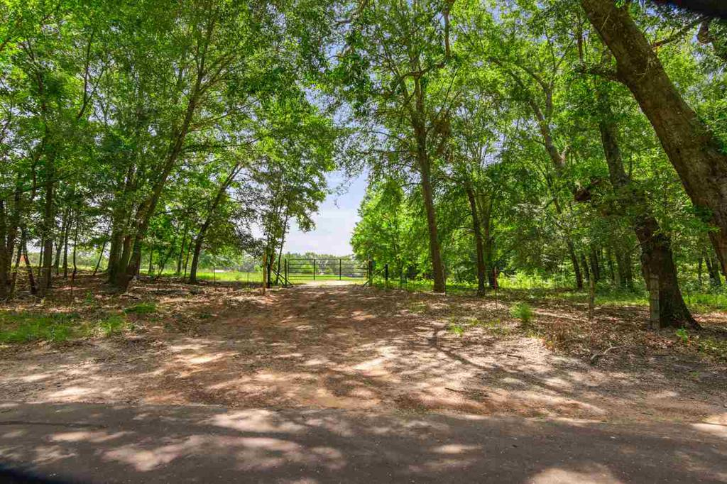 Photo of home for sale at 540 CR 4930, Quitman TX