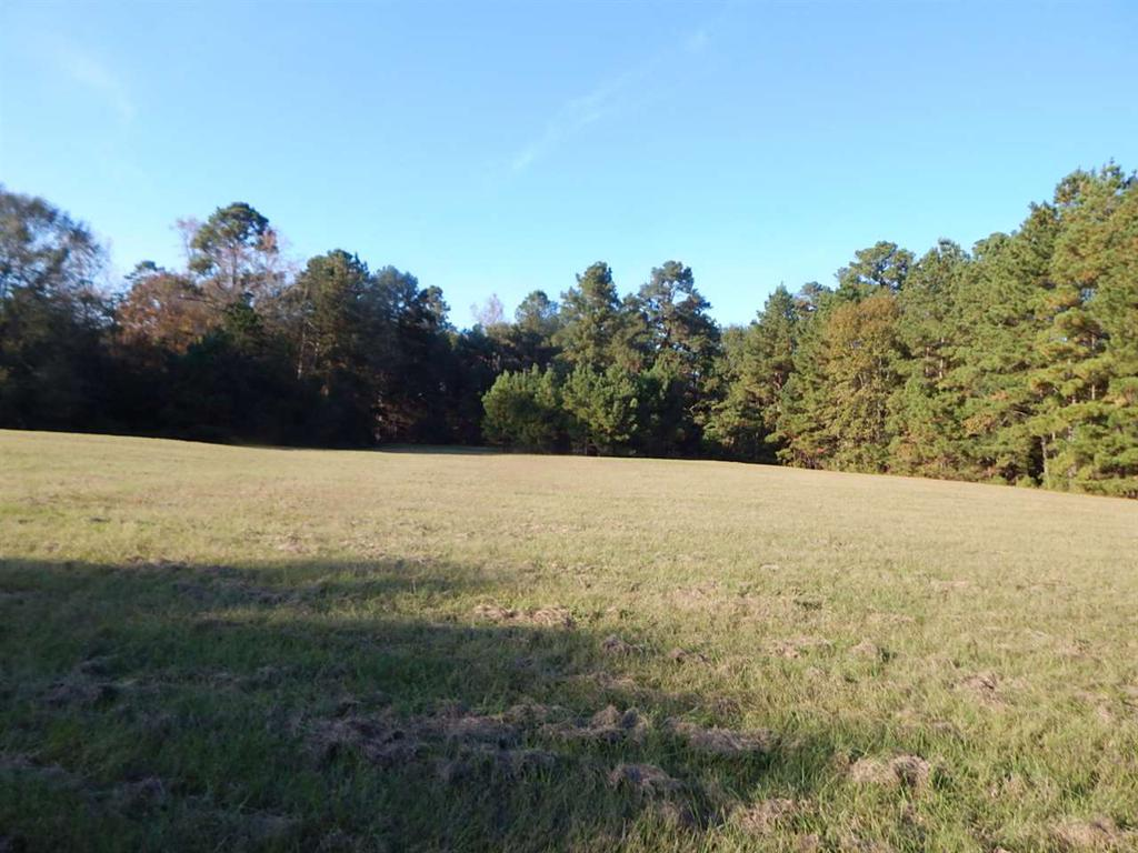 Photo of home for sale at tbd 7.1 ACRE HOLLYBROOK DRIVE, Gilmer TX