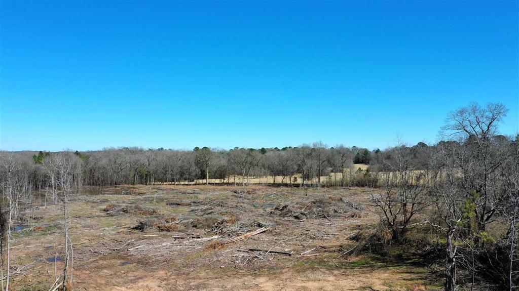 Photo of home for sale at TBD Hwy 59 N, Jeffrson TX