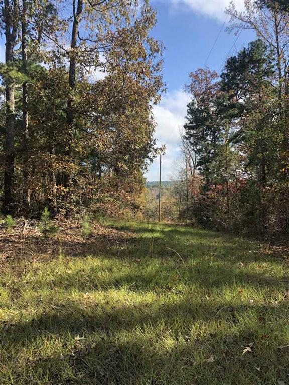 Photo of home for sale at TBD CR 2113, Douglassville TX