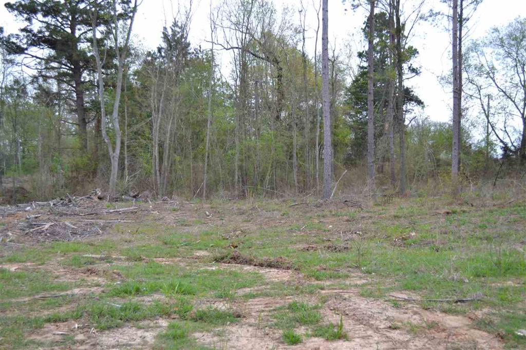 Photo of home for sale at TBD CR 108, Carthage TX