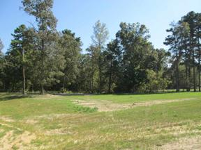 Property for sale at Lot 31 Willow Creek Ranch Rd, Gladewater,  Texas 75647