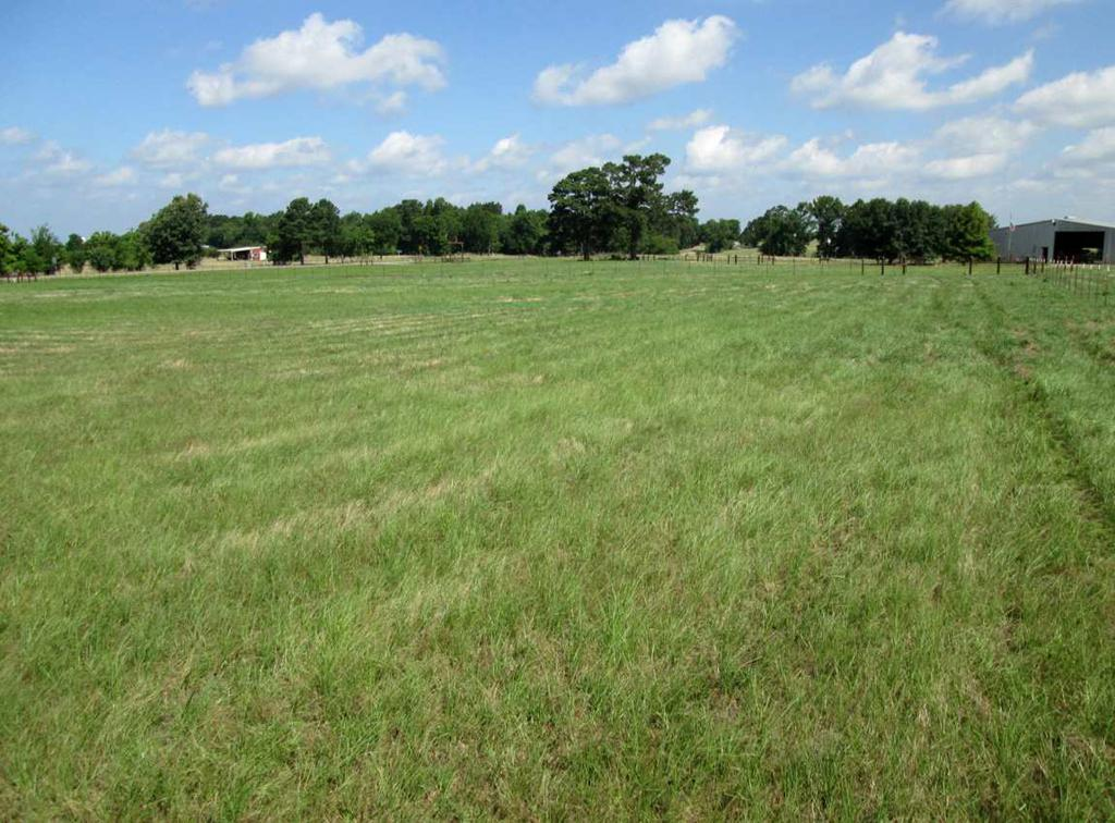 Photo of home for sale at tbd FM 2204 (Stone Rd), Kilgore TX