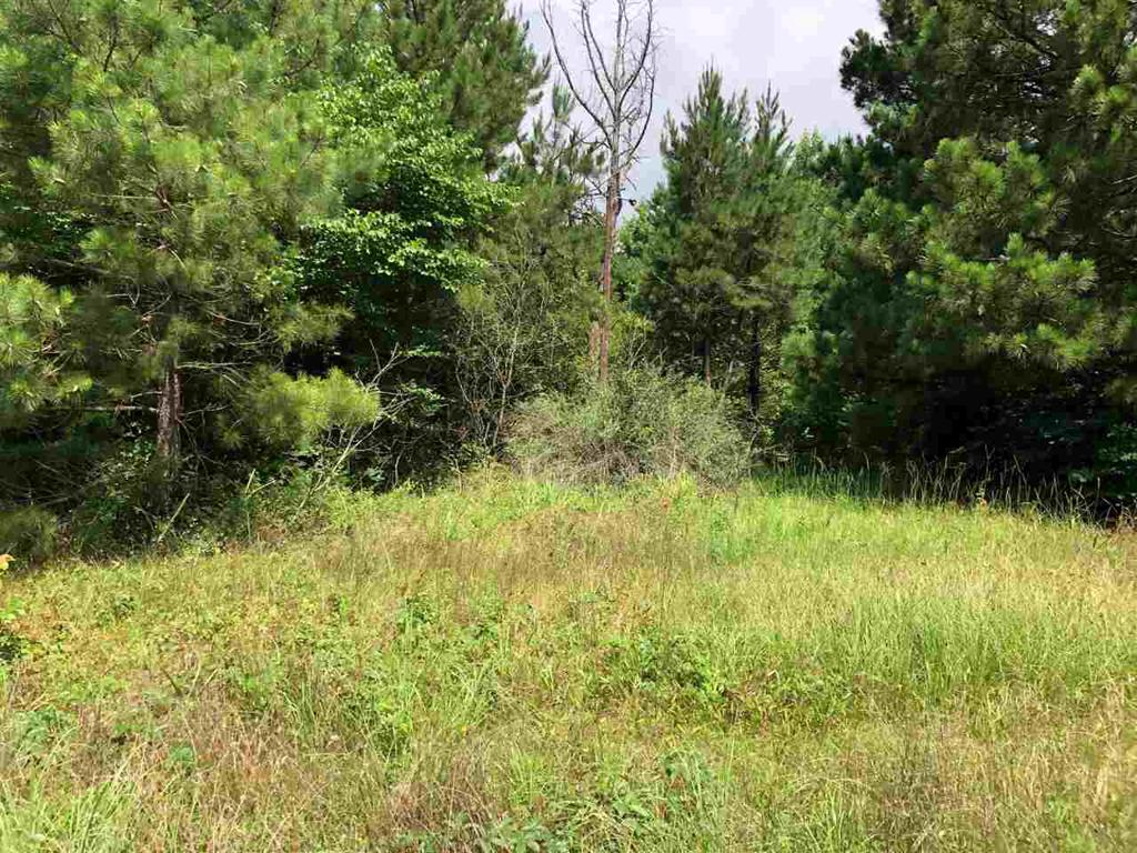 Photo of home for sale at TBD FM 995, Linden TX