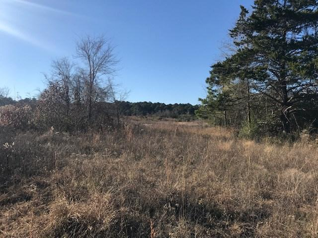 Photo of home for sale at CR 436, Tenaha TX