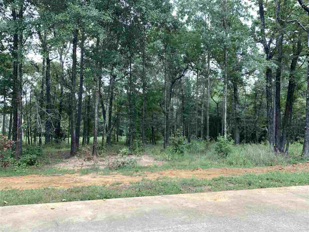 Photo of home for sale at 3700 Champions Ridge Lane, Longview TX