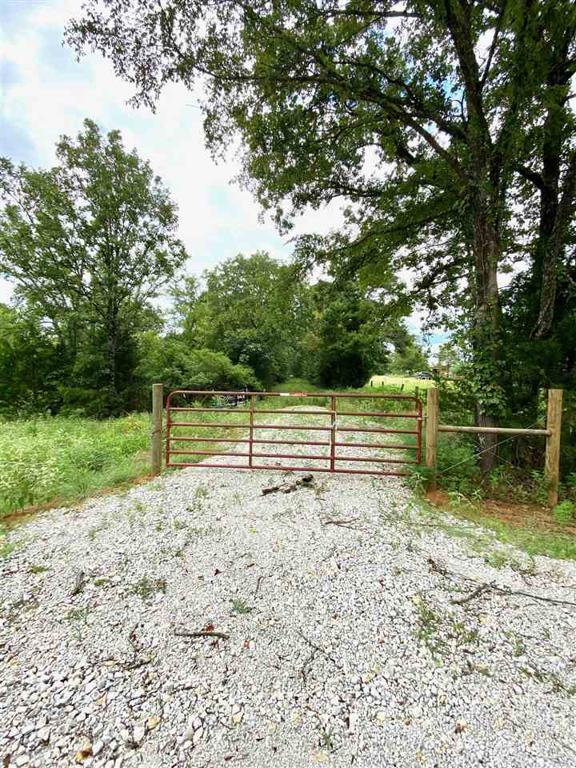 Photo of home for sale at tbd Silk Tree Rd, Gilmer TX