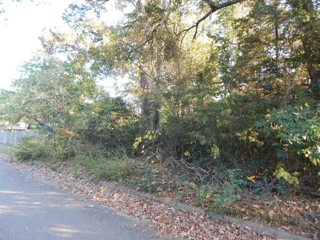 Photo of home for sale at tbd lot 10 WOODWAY LANE, Gilmer TX