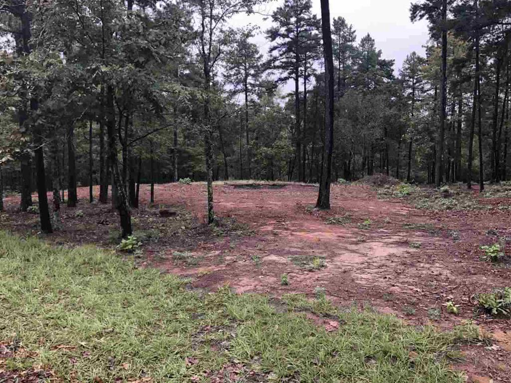 Photo of home for sale at LOT 4 LAKE GLADEWATER RD, Gladewater TX