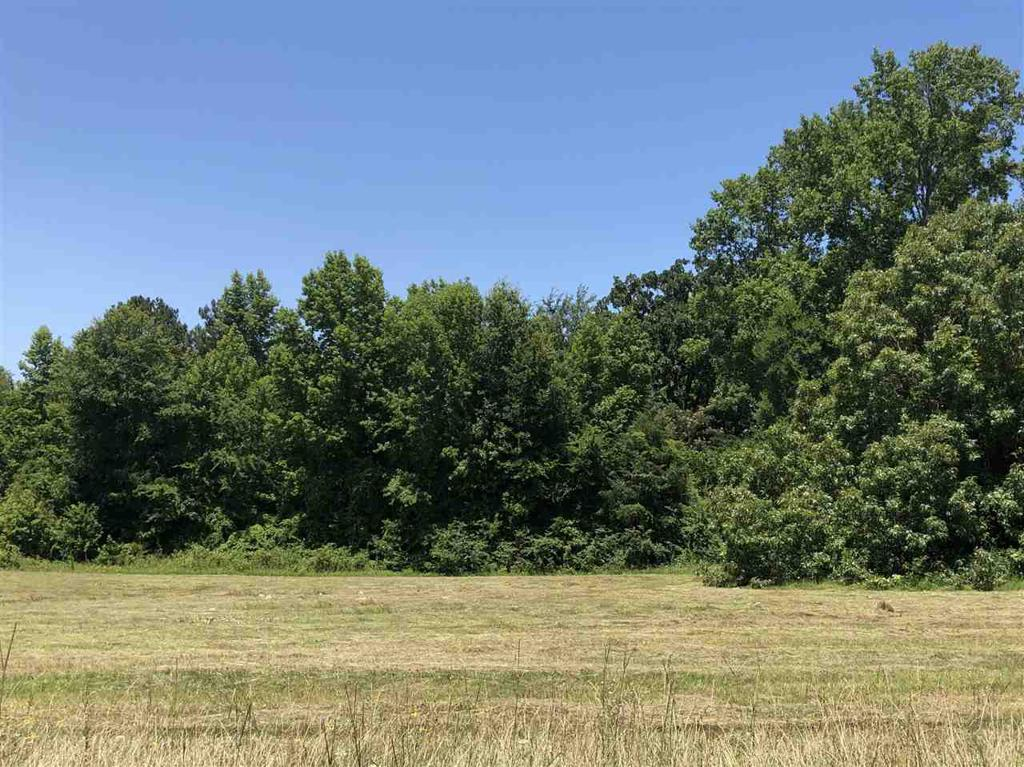 Photo of home for sale at LOT 23 JACOBIN CREEK DR, Gilmer TX