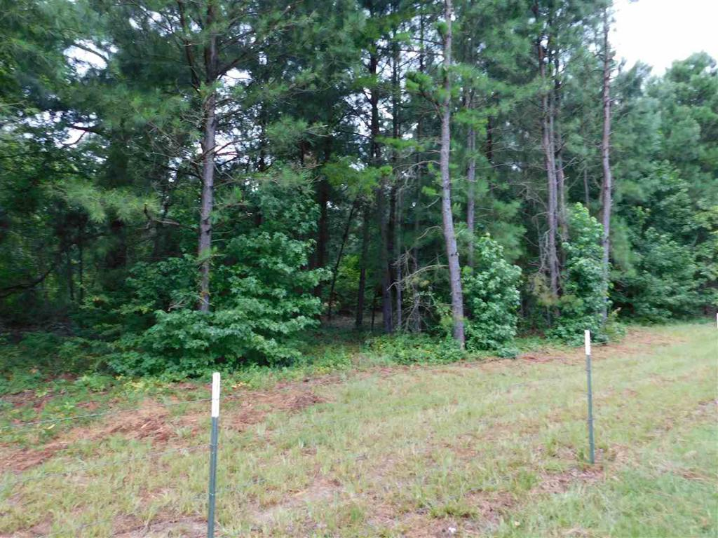 Photo of home for sale at TBD PINE RD, Big Sandy TX