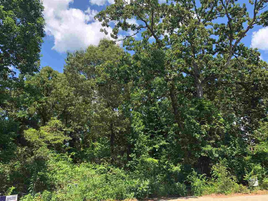 Photo of home for sale at LOT 33 TOWERING OAKS LN, Hallsville TX