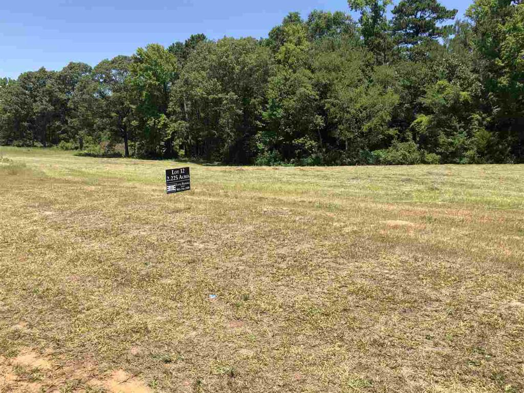Photo of home for sale at LOT 40 JACOBIN CREEK DR, Gilmer TX